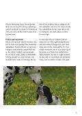 Før du køber hund - Kennel Sweet-Magic - Page 5