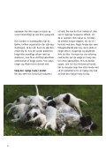 Før du køber hund - Kennel Sweet-Magic - Page 6