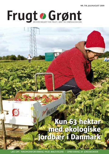 Kun 63 hektar med økologiske jordbær i Danmark - Gartneribladene