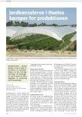 Kun 63 hektar med økologiske jordbær i Danmark - Gartneribladene - Page 4