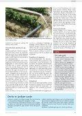 Kun 63 hektar med økologiske jordbær i Danmark - Gartneribladene - Page 5
