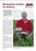 Kun 63 hektar med økologiske jordbær i Danmark - Gartneribladene - Page 6