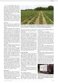 Kun 63 hektar med økologiske jordbær i Danmark - Gartneribladene - Page 7