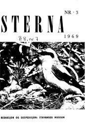 Sterna, bind 8 nr 7 (PDF-fil) - Museum Stavanger