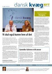Dansk kvæg nyt nr 5 2008