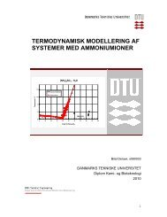 termodynamisk modellering af systemer med ammoniumioner