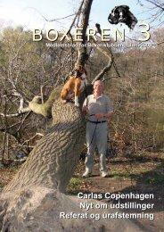 Boxeren 3-2008 - Boxerklubben