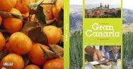 Smakebit av Gran Canaria - Skald