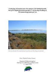 Vurdering af konsekvenser for naturen i EF-habitatområde 96 ... - Net