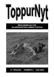 06/2006 - Toppur