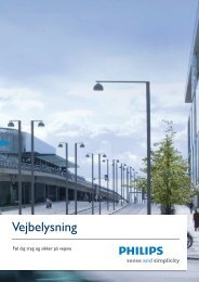 Vejbelysning - Philips