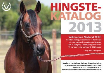 HINGSTE4 KATALOG