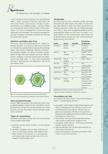 Cyto-Info 4-2007 für CD - Verband Deutscher Zytologisch Tätiger ...