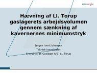 Hævning af Ll. Torup gaslagerets arbejdsvolumen gennem ...