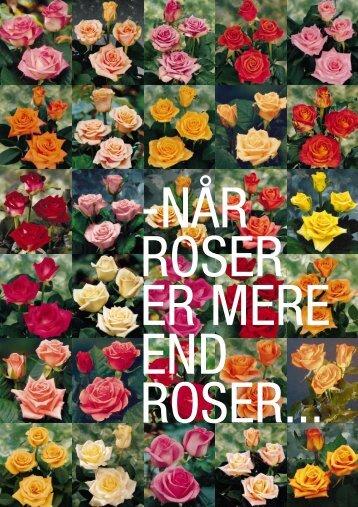 4 sider roser