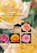 4 sider roser - Page 4