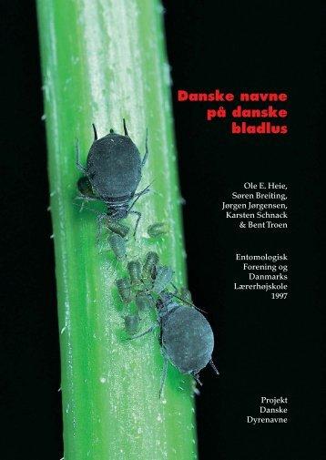 bladlus ombr - Allearter.dk
