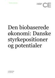 Danske styrkepositioner og potentialer - BioRefining Alliance