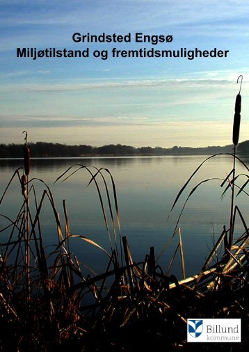 Grindsted Engsø Miljøtilstand og ... - Billund Kommune