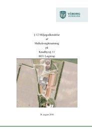 Læs hele godkendelsen (pdf) - Viborg Kommune