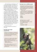 Jagt med salonriffel - Page 2
