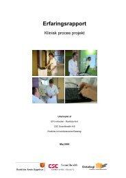 Klinisk - Health-care IT