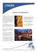 koralrevet.pdf - Tycho Brahe Planetarium - Page 4