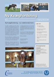 Ny KvægForskning nr. 1, februar 2009 - Kvægbrugets Forsøgscenter