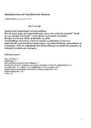 Idekonkurrence til Naturhistorisk Museum - Stenvennerne