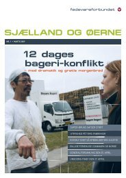 12 dages bageri-konflikt - Fødevareforbundet Sjælland og Øerne ...