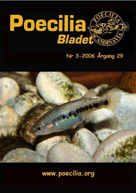 4-2004 arbdok - Poecilia Scandinavia