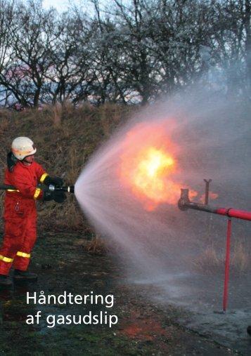 Håndtering af gasudslip - Dansk Gasteknisk Center