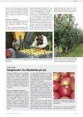 Sødkirsebær koges til delikatesser - Gartneribladene - Page 7