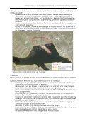 IDÉFASE FOR Lolland Kystkulturcenter og Bevaringsværft i Nakskov - Page 3