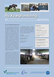Ny Kvægforskning nr. 5, oktober 2007 - Kvægbrugets Forsøgscenter