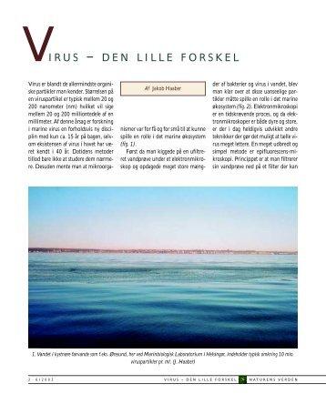 VIRUS – DEN LILLE FORSKEL - Jakob Haaber