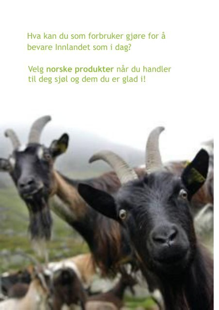 Landbruket i Innlandet skaper verdier!