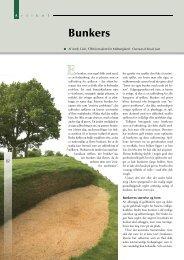 Bunkers - Turfgrass