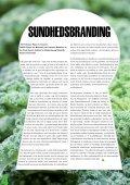 Symboløkonomiske Nyheder - Brand Base - Page 4