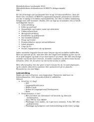 Resume fra visionsdebatten - Metodistkirken i Danmark