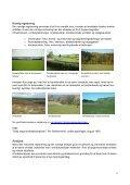 Landskabsanalyse og lokalisering - Videncentret for Landbrug - Page 5