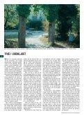Miljøvenlig brug af træ i have og landskab - Grønt Miljø - Page 4