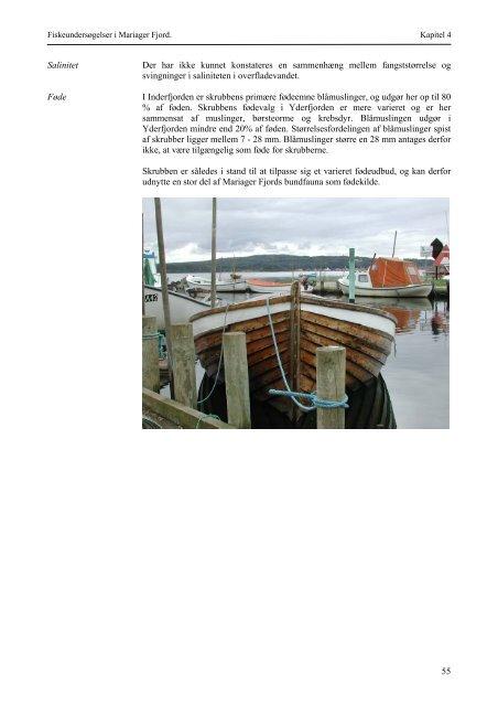 Fiskeundersøgelser. Mariager Fjord 1998-2000.