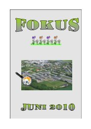 Juni 2010 - Langå Skole - Fejl.