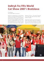 Indtryk fra FIFe World Cat Show 2007 i Bratislava - Felis Danica