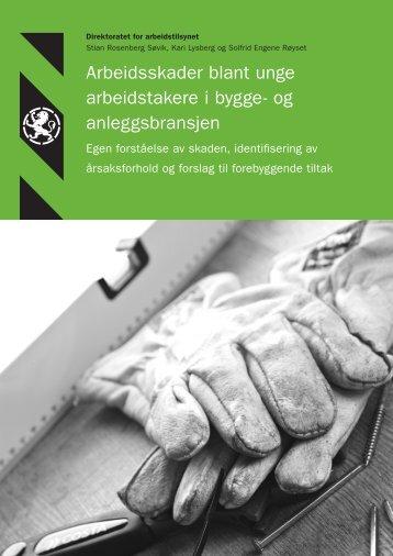 Arbeidsskader blant unge arbeidstakere - Regionale verneombud