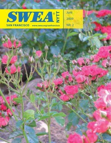 NY T T - SWEA International