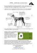 UTIKA – mellem dyr og mennesker - Page 3