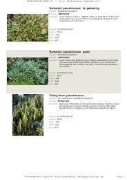 Rhododendron Sygdomme - Rhodospecialisten.dk