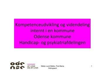Puk-Maria Holmgaard og Mette MÃļllers oplÃĶg fra dagen kan ...
